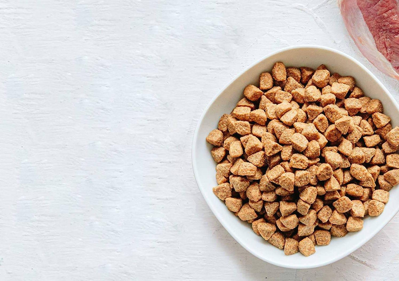 mejor comida para perros con diarrea