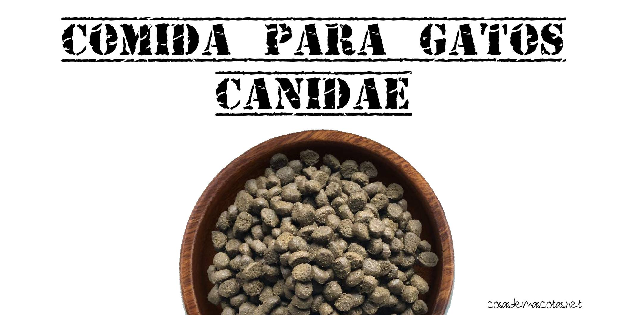 comida para gatos canidae