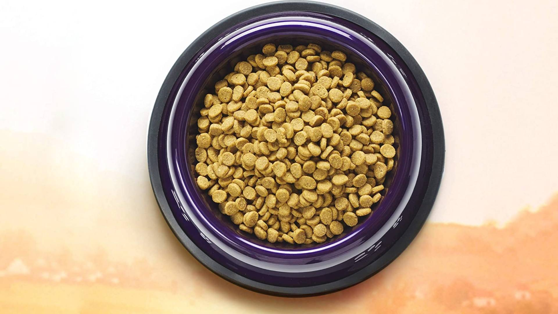 comida para gatos halo