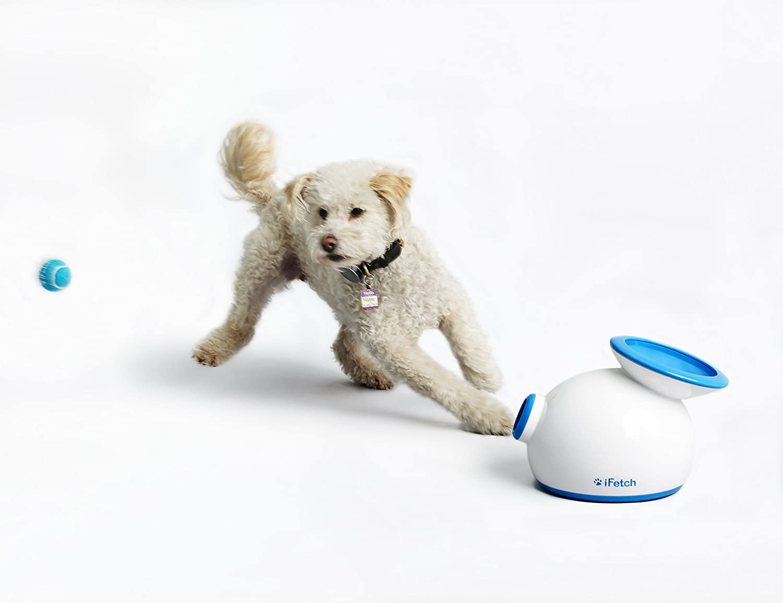 lanzadores de pelotas para perros - lanzadores de pelotas automáticos para perros