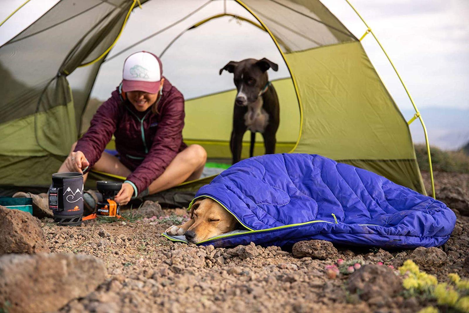 Los mejores sacos de dormir para perros [year] (análisis) 1