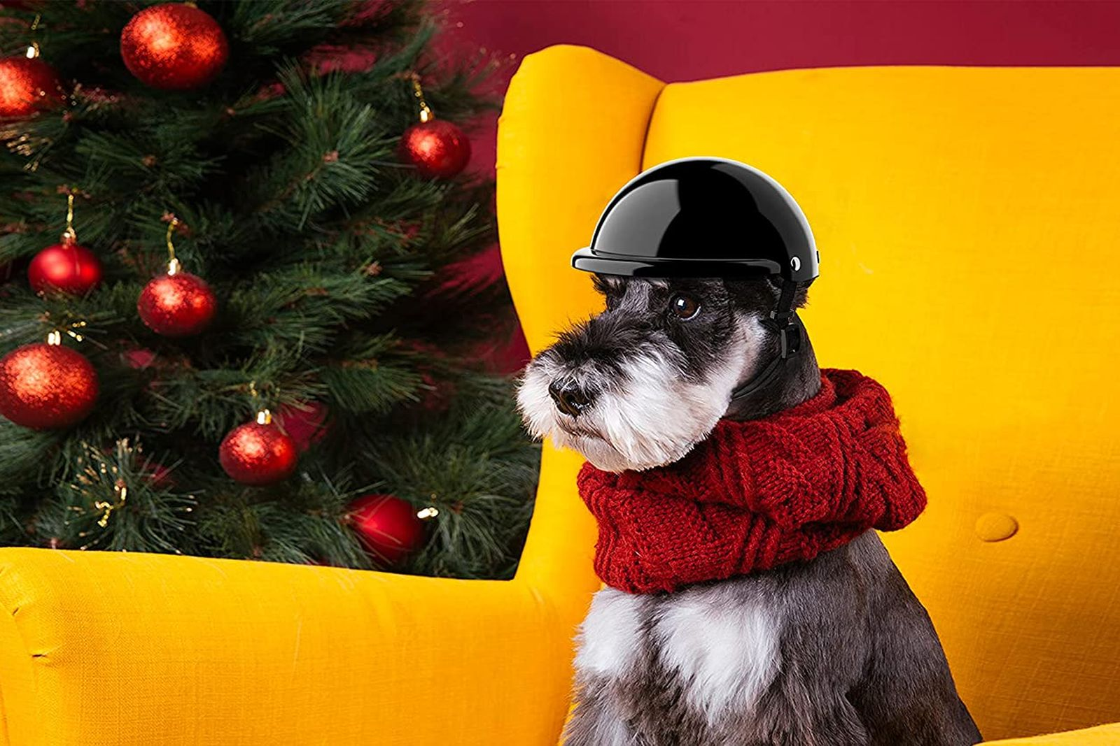 mejores cascos para perros
